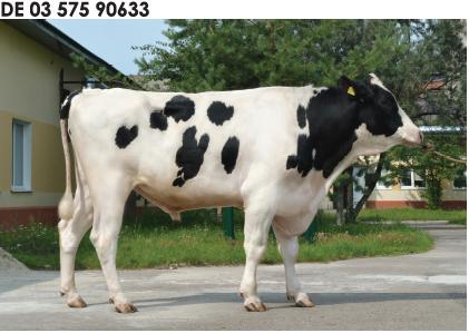Семя быка Альба-М Германия