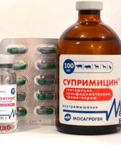 Эффективное лечение Диареи телят