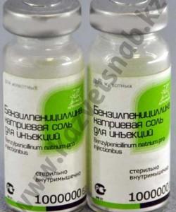 Бензилпенициллина натриевая соль